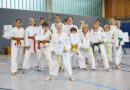 Was Italien und Holland mit Karate verbinden kann